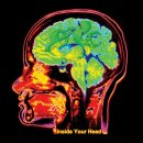 ORESUND SPACE COLLECTIVE - Inside Your Head (colour) 2LP