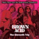 V/A - Brown Acid: The Eleventh Trip (colour) LP