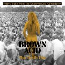 V/A - Brown Acid: The Tenth Trip (black) LP
