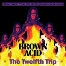 V/A - Brown Acid: The Twelfth Trip CD